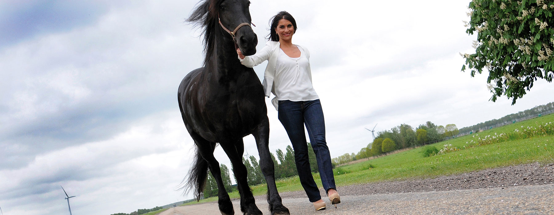Turkije Meral Halaceli, boek Tutti frutti, het succes van kleurrijk en ondernemend Nederland